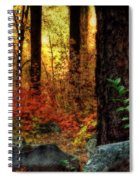 Early Morning Walk Spiral Notebook