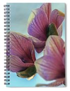 Early Spring Beauty Spiral Notebook