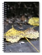Early Start To Autumn Spiral Notebook