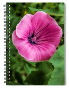 Early Summer Blooms Impressions - Bright Pink Malva - Vertical View Spiral Notebook