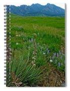 Early Summer Walk Spiral Notebook