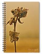 Earth Born Spiral Notebook