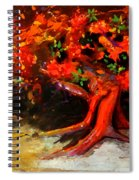 Earth Breathe Spiral Notebook