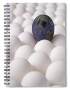 Earth Egg Pollution Spiral Notebook