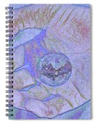 Earth In Hand Spiral Notebook