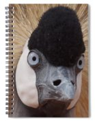 East African Crowned Crane 6 Spiral Notebook