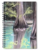 East Texas Cyprus In Pastels Spiral Notebook