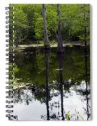 East Texas Cyprus Pond Spiral Notebook