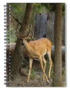East Texas Whitetail  Spiral Notebook