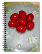 Easter And Red Eggs Spiral Notebook