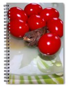 Easter And Sparrow Spiral Notebook