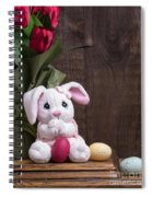 Easter Bunny Card Spiral Notebook