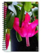 Easter Cactus Digtial Painting Square Spiral Notebook