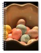 Easter Candy Malted Milk Balls I Spiral Notebook