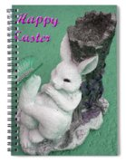 Easter Card 1 Spiral Notebook