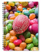 Easter Egg And Jellybeans  Spiral Notebook