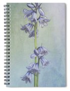 Easter Hyacinth Spiral Notebook
