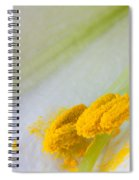 Easter Lily Macro Spiral Notebook