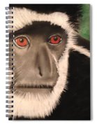 Eastern Colobus Monkey Spiral Notebook