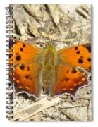 Eastern Comma Spiral Notebook