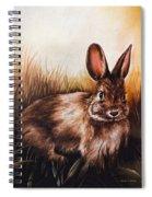 Eastern Cottontail Rabbit Spiral Notebook