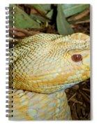 Eastern Diamondback Rattlesnake Albino Spiral Notebook