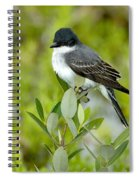 Eastern Kingbird Spiral Notebook