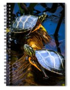 Eastern Painted Turtles Spiral Notebook