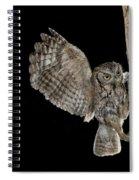 Eastern Screech Owls At Nest Spiral Notebook