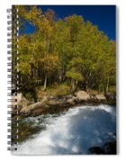 Eastern Sierras 15 Spiral Notebook