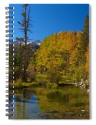 Eastern Sierras 16 Spiral Notebook