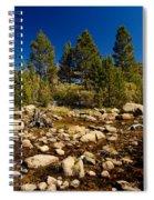 Eastern Sierras 21 Spiral Notebook