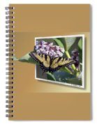 Eastern Tiger Swallow Tail Spiral Notebook