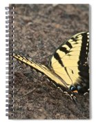 Eastern Tiger Swallowtail 8564 3241 Spiral Notebook