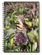 Eastern Tiger Swallowtail - Butterfly Spiral Notebook