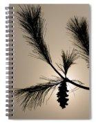 Eastern White Pine Spiral Notebook