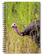 Eastern Wild Turkey - Longbeard Spiral Notebook