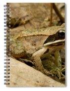 Eastern Wood Frog Spiral Notebook