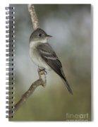 Eastern Wood-pewee Spiral Notebook