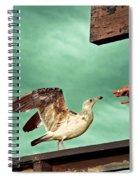 Easy Prey Spiral Notebook