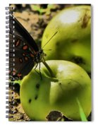 Eat Healthy Spiral Notebook