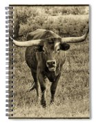 Eat Leaf Not Beef Sepia Spiral Notebook