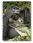 Eating Mountain Gorilla Spiral Notebook