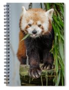 Eating With Mouth Full Spiral Notebook