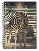 Eating Zebra Spiral Notebook
