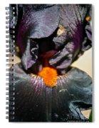 Ebony Iris Spiral Notebook