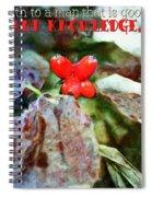 Ecclesiastes 2 26 Spiral Notebook