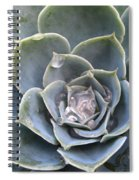 Echeveria With Water Drops Spiral Notebook