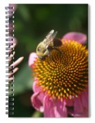 Echinacea And Bee Spiral Notebook