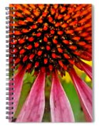 Echinacea Flower Upclose Filtered Spiral Notebook